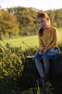 Redheaded girl sitting on a tree stump - GAF00134