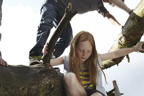 Redheaded girl with friends climbing in a tree - AMEF00053