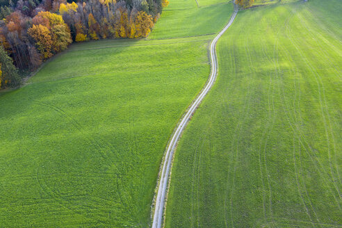 Germany, Bavaria, Icking, dirt track and meadows, aerial view - SIEF08527