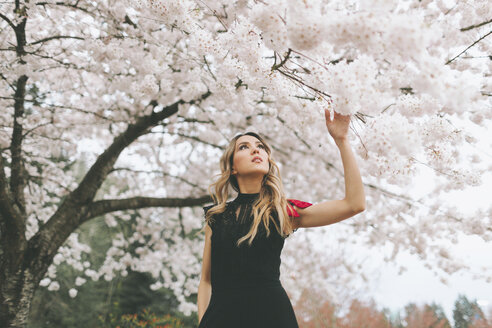 Beautiful woman admiring flowering cherry tree - CMSF00042