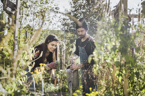 Happy couple gardening in urban garden together - VGPF00017