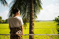 Woman looking out over Paddy Fields, Anuradhapura, Sri Lanka - CUF49971