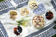 Top view of healthy picnic snacks on a blanket - IGGF00976