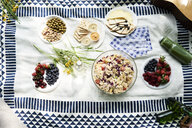 Top view of healthy picnic snacks on a blanket - IGGF00979