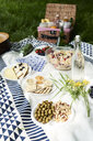 Healthy picnic snacks on a blanket in grass - IGGF00982