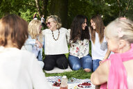 Group of women having fun at a picnic in park - IGGF01009