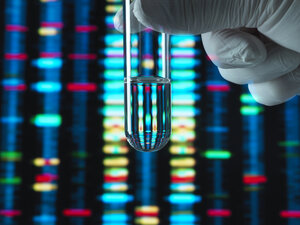 Genetic Research, DNA profile reflected in a test tube containing a sample - ABRF00354