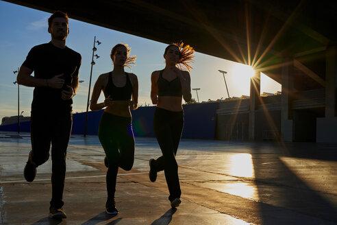 Friends jogging in sports stadium at sunset - CUF50271