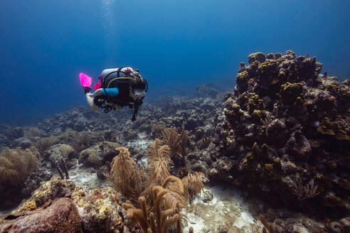Female diver exploring reefs, Curacao - CUF50481