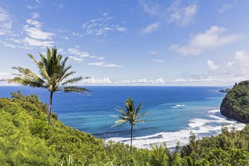 USA, Hawaii, Big Island, Pacific Ocean, Pololu Valley Lookout - FOF10598