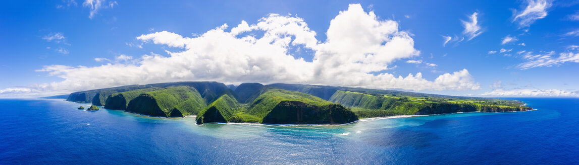 USA, Hawaii, Big Island, Pacific Ocean, Pololu Valley Lookout, Kohala Forest Reserve, Akoakoa Point, Aerial View - FOF10601