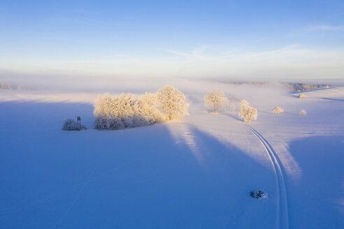 Winterlandschaft bei Sonnenaufgang, bei Münsing, Fünfseenland, Drohnenaufnahme, Oberbayern, Bayern, Deutschland - SIEF08564