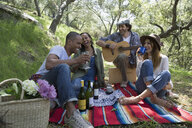 Friends enjoying picnic playing guitar in woods - HEROF35787