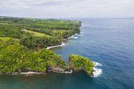 USA, Hawaii, Big Island, Onomea Bay, Aerial view - FOF10621