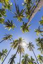 USA, Hawaii, Big Island, Pu'uhonua o Honaunau National Park - FOF10628