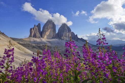 Italy, Sexten Dolomites, Tre Cime di Lavaredo, Nature Park Tre Cime, Unesco World Heritage Natural Site - RUEF02152