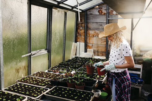Young woman gardening in a greenhouse - HMEF00315