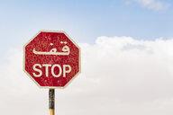 Sultanate Of Oman, Ras al Hadd, Stop sign - WVF01125