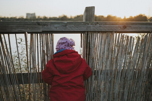 Rear view of toddler girl in warm clothes at a lake - DWF00396
