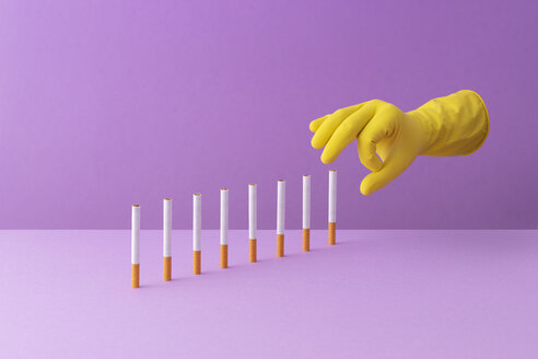 A yellow hand flick multiple cigarettes organized in a row over a purple background. - DRBF00150