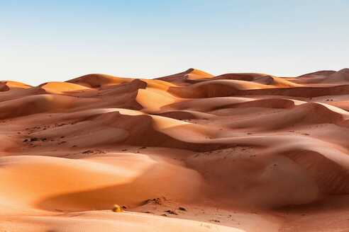 Sultanate Of Oman, Wahiba Sands, dunes in the desert - WVF01398