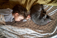 Toddler girl and gray cat sleeping on bed, top view - GEMF02916