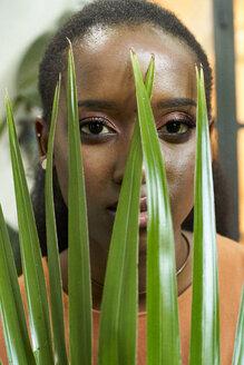 Woman's face behind the plant. Botanica, Moçambique, Maputo. - VEGF00024