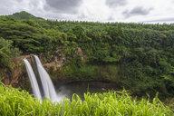 USA, Hawaii, Kauai, Wailua State Park, Wailua Falls - FOF10726