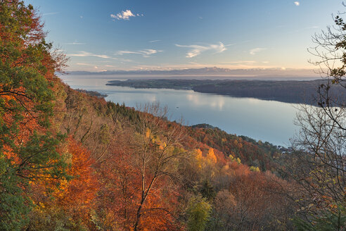 Germany, Baden-Wuerrttemberg, Lake Constance, Sipplingen, autumn forest, Alps and lake - SH02175