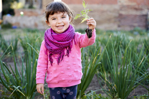 Portrait of happy toddler girl with small tomato plant in the garden - GEMF02924
