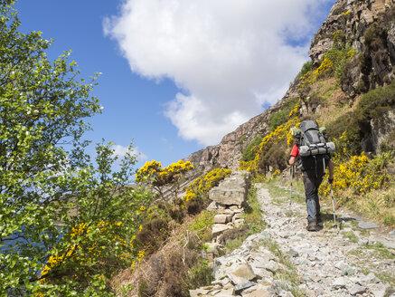 Großbritannien, Schottland, Northwest Highlands,Wanderer am Loch Gleann Dubh - HUSF00042