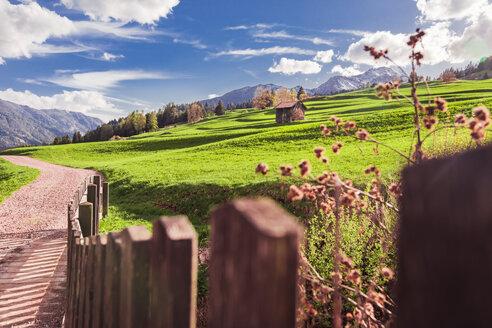 Italy, Trentino Alto-Adige, Vigo di Fassa, rural scene between Dolomites mountains - FLMF00185