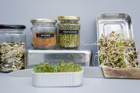 Preserving jars with grain, mung sprouts and cress, home grown sprouts - GISF00417