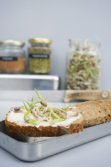 Grain sandwich with mung sprouts - GISF00420