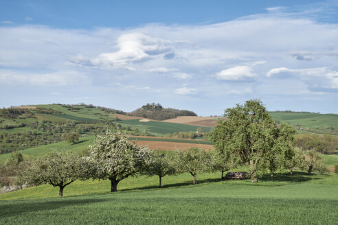 Germany, Maegdeberg, hilly landscape with Hegau volcano - ELF02017