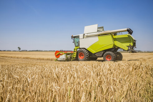 Austria, Burgenland, combine harvester on a wheat field - AIF00671
