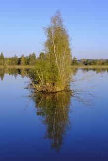 Germany, Augsburg, Bobinger reservoir - SIEF08608