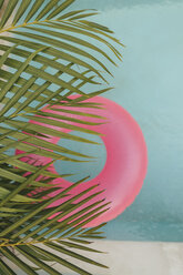Palm leaf and pink inflatable ring in swimming pool - LHPF00691