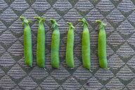 Row of pea pods - BLEF00805