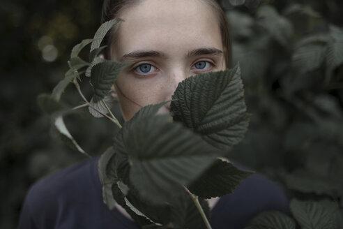 Face of Caucasian teenage girl behind leaves - BLEF01039