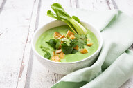 Green thai curry with spinach, pak choi, tofu and coriander - LVF07983