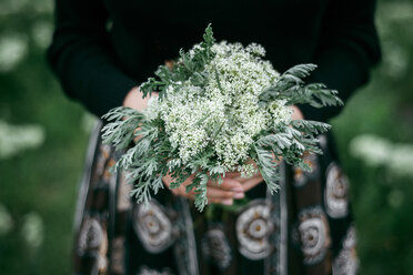 Hands of Caucasian woman holding wildflowers - BLEF01514