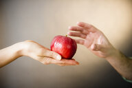 Hand of woman offering red apple to man - BLEF01839