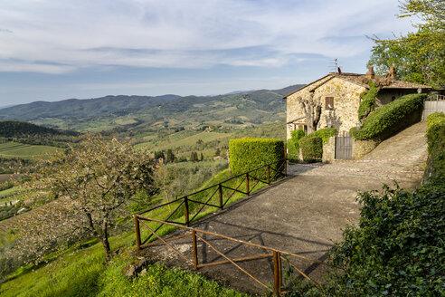 Italy, Tuscany, mountain village Panzano in Chianti - STSF01959