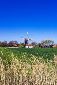 Ansichten von Domburg in Zeeland und Umgebung, Niederlande, Europa - THAF02494