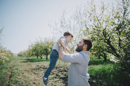Caucasian father lifting son near tree - BLEF02103