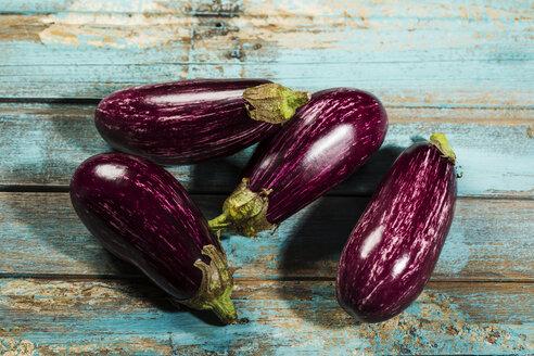 Aubergine violette-weiß gestreift, Studio - MAEF12861