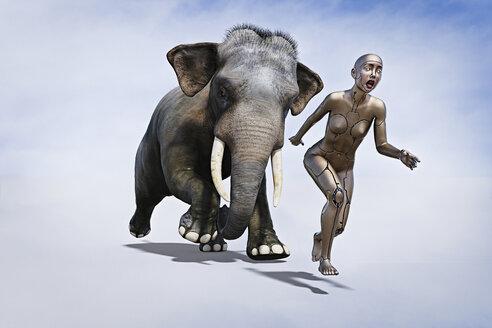 Elephant chasing robot woman - BLEF02646