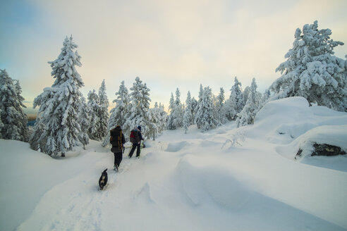 Caucasian men hiking in snowy forest with dog - BLEF02673