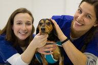 Veterinarians comforting dog before treatment - CUF51109
